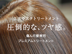 髪質改善 エクラスタトリートメント画像